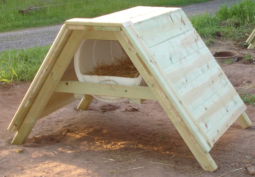 how to build a sled dog house 55 gallon barrel diy