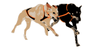 Endurance Kennels LLC Logo