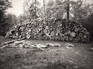 off the grid wood harvesting