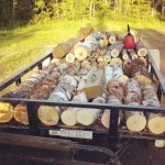 off the grid loggers cord firewood birch maple